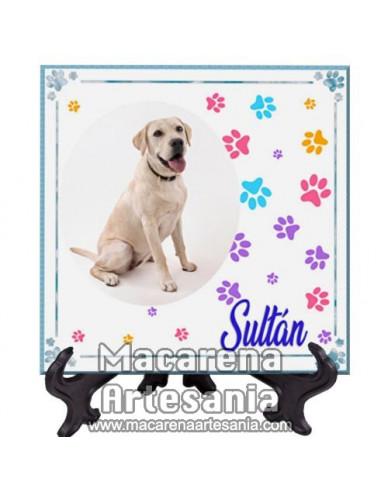 Azulejo cuadrado personalizado con la fotografía y nombre de tu mascota